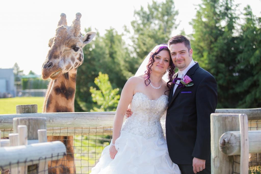 zoo de granby, mariage, photographe